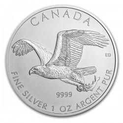 CANADA 5 DOLARES 2014 WILDLIFE AGUILA BLANCA MONEDA DE PLATA PURA 9999 $5 DOLLAR SILVER COIN 1 ONZA