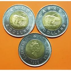 CANADA 2 DOLARES 1996 OSO POLAR 3º BUSTO DE ISABEL II KM.270 MONEDA BIMETALICA SC- $2 Dollars coin