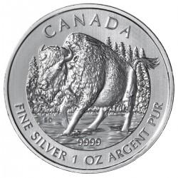 CANADA 5 DOLARES 2013 WILDLIFE BUFALO MONEDA DE PLATA PURA 9999 $5 DOLLAR SILVER COIN 1 ONZA OUNCE OZ BUFFALO