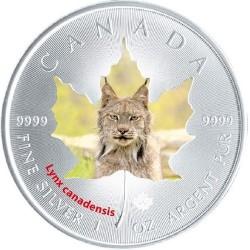 @COLORES@ CANADA 5 DOLARES 2015 WILDLIFE LINCE MONEDA DE PLATA PURA 9999 $5 silver 1 ONZA OZ LYNX CANDENSIS